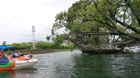 サギ島3.jpg