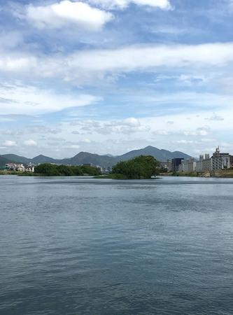 サギ島へ.jpg